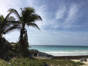 'Take me to Tulum' Mayan Ruins 5