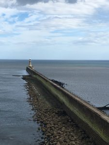 'Essential North East'- Forts and Castles 7
