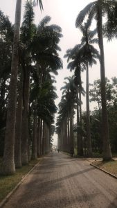 Guestblog- 'Getting into Ghana' with TravelEat Slay 11