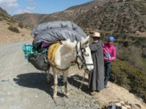 Guestblog- 'A Flat Footed Yorkshireman in the High Atlas' 6