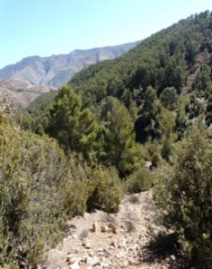 Guestblog- 'A Flat Footed Yorkshireman in the High Atlas' 22