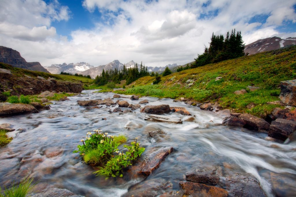 'My son's first backpacking adventure' by DreamingOutdoors 3